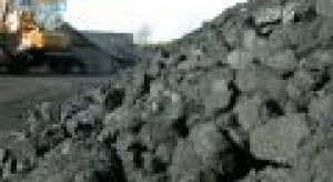 Węgiel ciągle nie wychodzi z mody