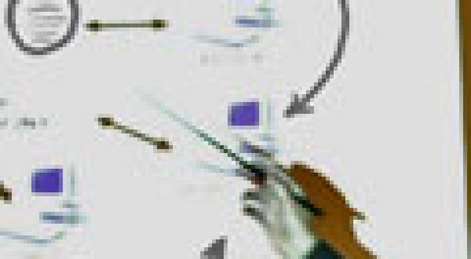 BMP: teoria sprawdzana praktyką