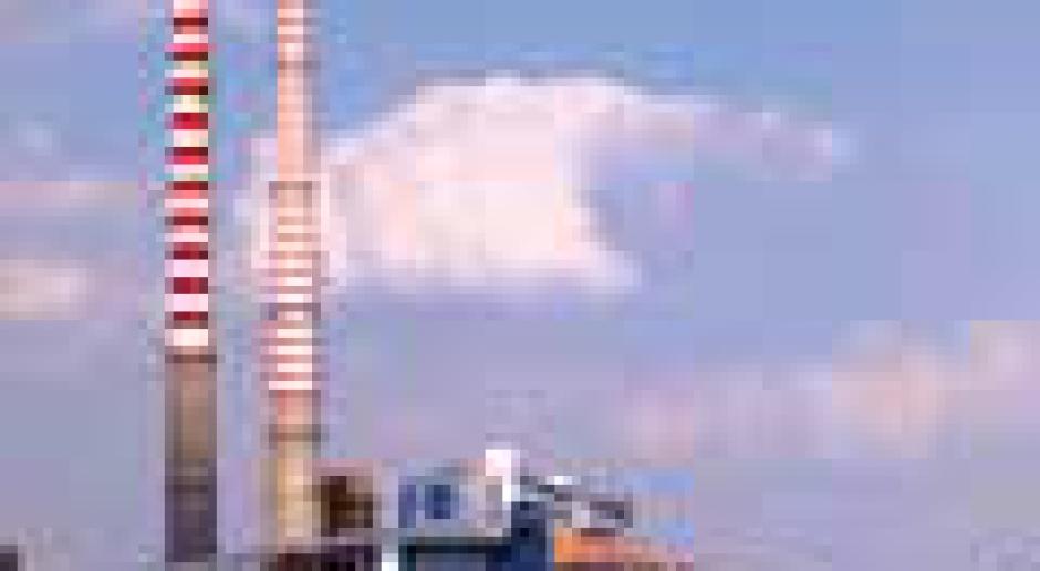 Prywatyzacja elektroenergetyki: polityczny hamulec