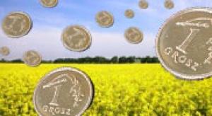 Rząd promuje biopaliwa, ale nie ujawnia ulg