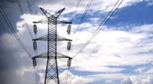 Białe certyfikaty zmuszą firmy do oszczędności energii