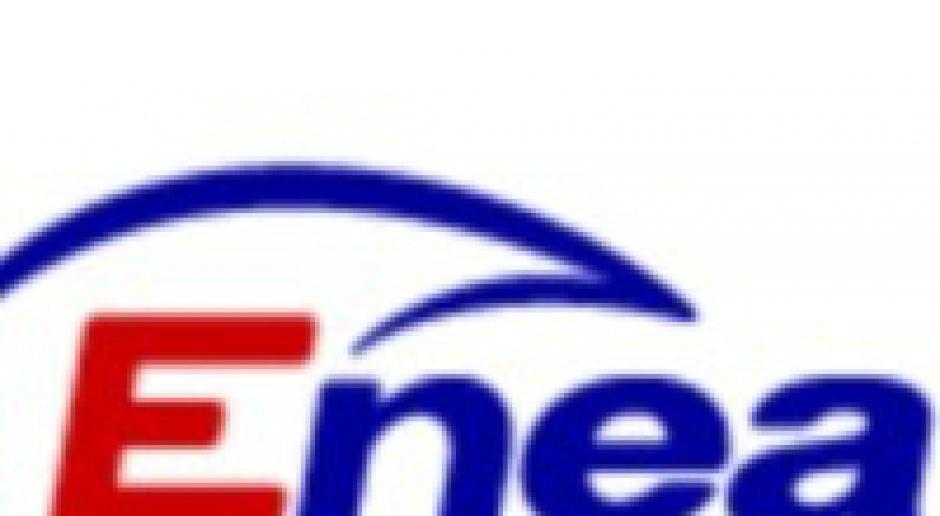 Enea wybrała doradcę prywatyzacyjnego
