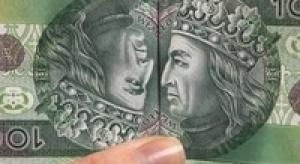 Najwięcej pożyczają firmy banki