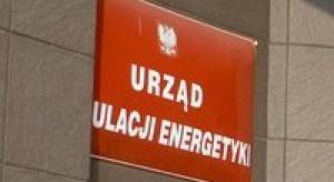 URE żąda reakcji Skarbu w sprawie gazu