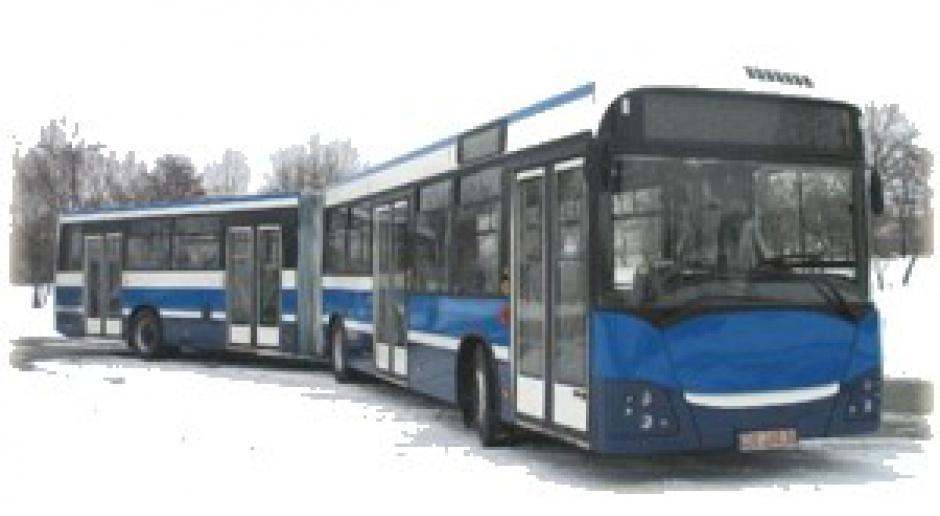 Syndyk Jelcza drze koty z Polskimi Autobusami