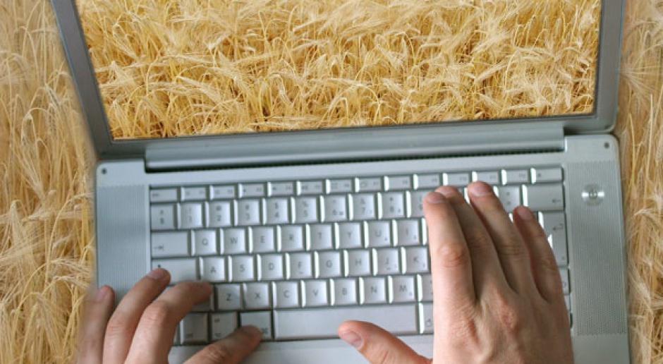 Rynek ERP ratuje sektor rolniczy?