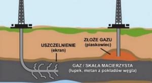 Aspekty geologiczne wierceń kierunkowych