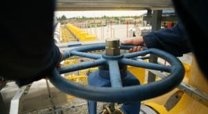 Janukowycz przyjedzie do Moskwy w sprawie gazu