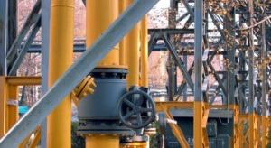 Kto oprócz PGNiG będzie importował gaz przez Świnoujście