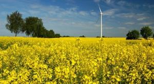 Zielonego  prądu więcej  o  ponad 15 proc.