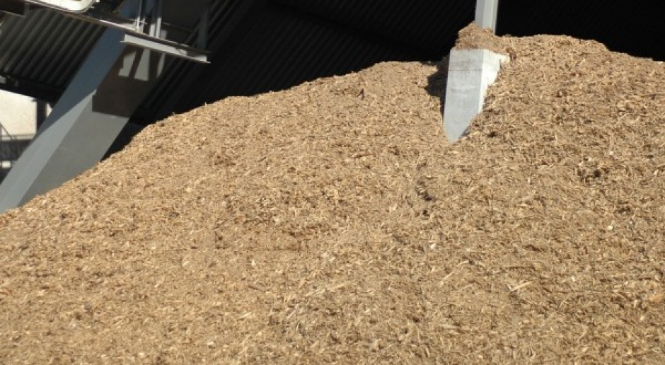 Elektrociepłownia Rafako na biomasę coraz bliżej