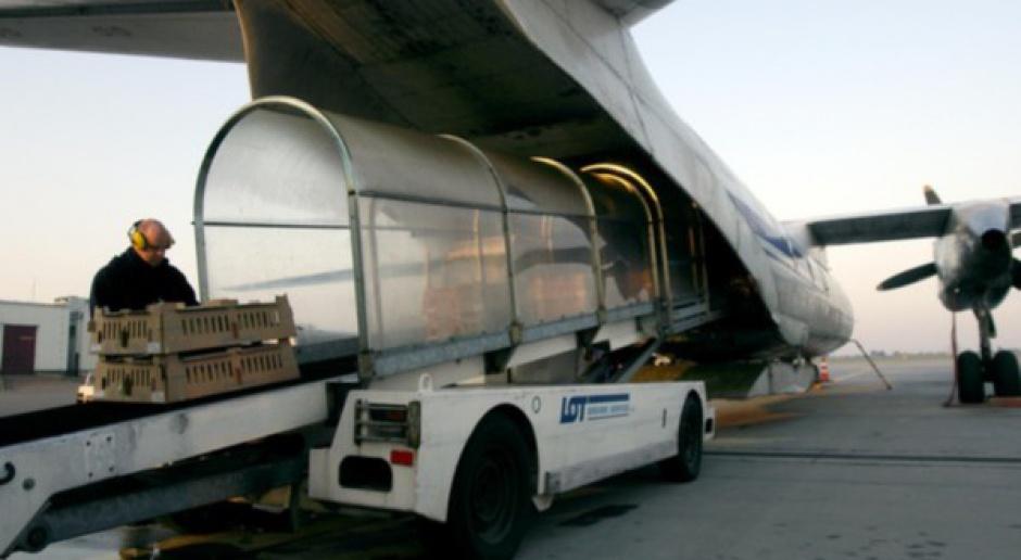 Związkowcy: niebezpiecznie na polskich lotniskach!