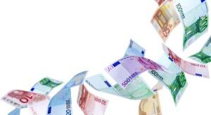 Euro najdroższe od stycznia, dolar od marca 2009