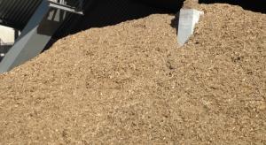 PGE przymierza się do budowy bloku na biomasę w Lublinie