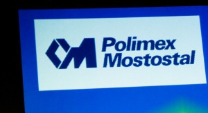 Rada Polimeksu wybierze prezesa w ciągu ok. miesiąca