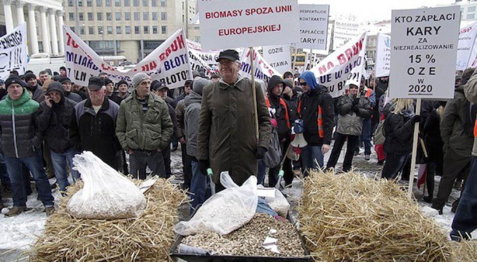 Protest producentów biomasy przed Ministerstwem Gospodarki