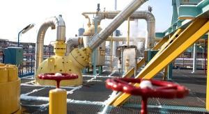 Chemia szuka alternatywy w zakupach gazu