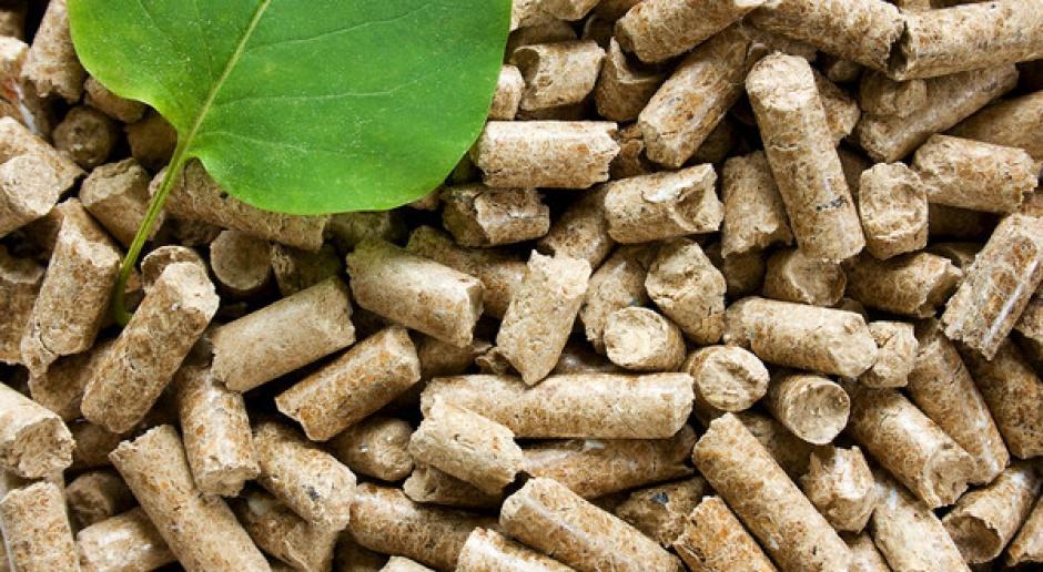 URE nie uznaje pełnowartościowego drewna jako biomasy