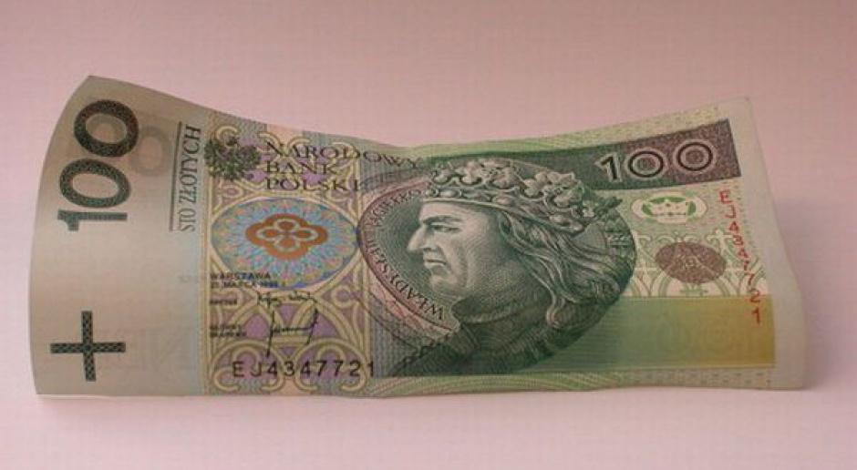 Waluty. Mocne dane z Eurolandu wsparciem dla lokalnych walut
