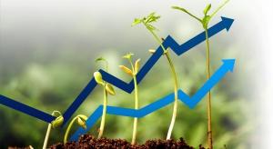 Wzrost, czyli racja stanu