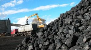 Walczcie z niską emisją, ale węgiel zostawcie w spokoju