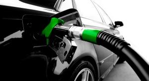 Branża domaga się zmian w koncesjonowaniu rynku paliw