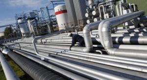 Decyzja w sprawie kompleksu petrochemicznego w 2-3 miesiące