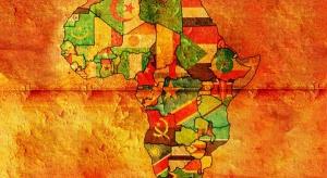 Polskie firmy coraz mocniej prą do Afryki