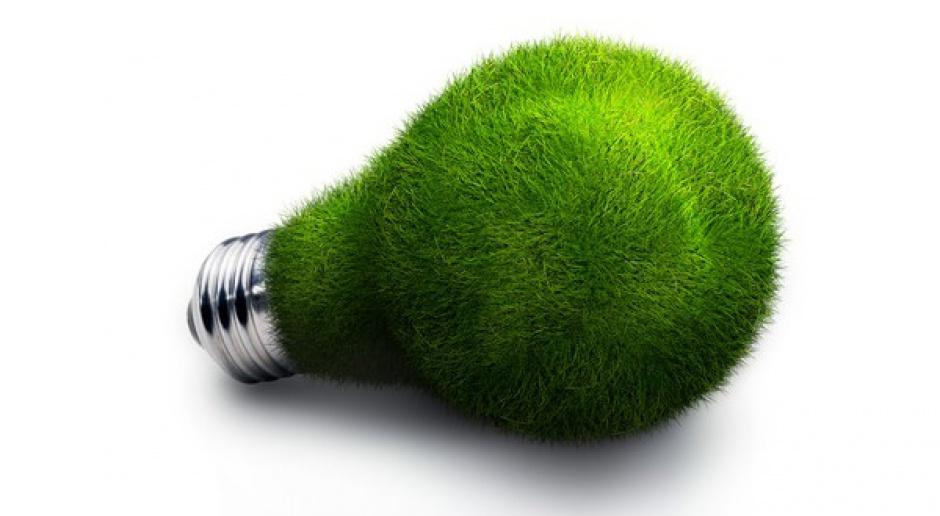 Nowe wsparcie dla firm z sektora zielonych technologii