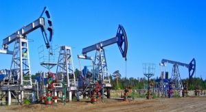 Merrill Lynch: ropa jeszcze stanieje