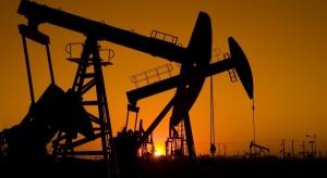 Merrill Lynch: cena ropy znalazła dno