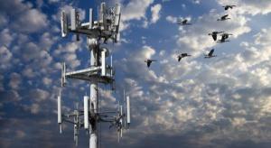 Aukcja częstotliwości LTE grozi opóźnieniem inwestycji