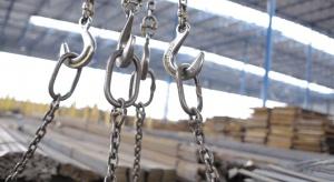 Karo - BHZ chce przejąć Walcownię Metali Dziedzice