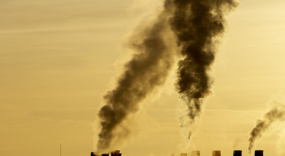 Sieć, pył i medialny szum - jak oczyścić powietrze?