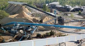 Ostrzeżenie: masowe sięganie po biomasę leśną to nie sposób na ochronę klimatu