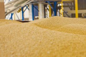 Grupa Azoty ma nową broń w walce o nawozowy rynek