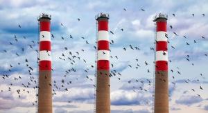 Ministerstwo Klimatu: system handlu CO2 jest potrzebny, ale wymaga zmian