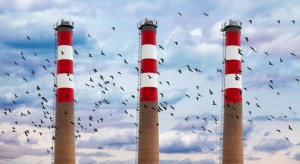 W 2019 r. zahamowano wzrost emisji CO2 z sektora energii. MAE opublikowała zaskakujące dane