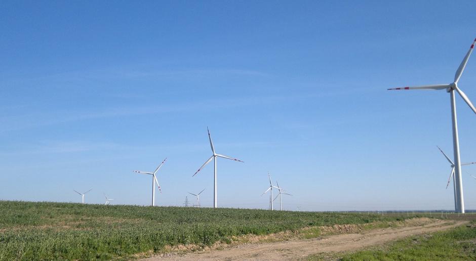 EBI chce finansować w Polsce m.in. energetykę odnawialną