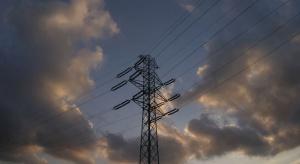 Kończy się przebudowa 60-letniej linii energetycznej. Drzewa będą jej niestraszne