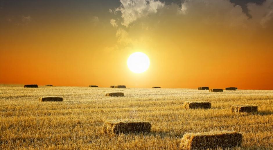 ZBP chce zmian w projekcie ustawy o obrocie ziemią