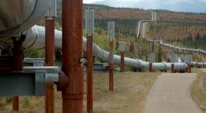 SOCAR zwiększy transport ropy przez Rosję w 2017 roku