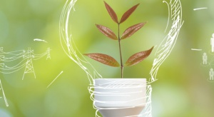 Apel o szybkie przyjęcie ustawy o efektywności energetycznej