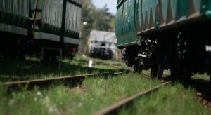 Tory nie dla pieszych, lecz pociągów