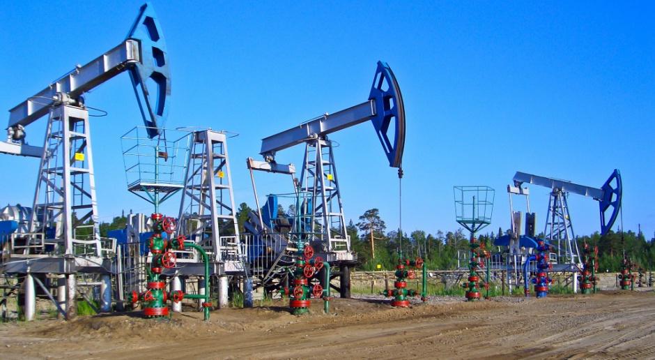 Rośnie wydobycie ropy i gazu w krajach OECD