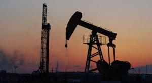 OMV zwiększa nakłady na wydobycie w Austrii