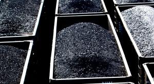 Spory wzrost eksportu rosyjskiego węgla