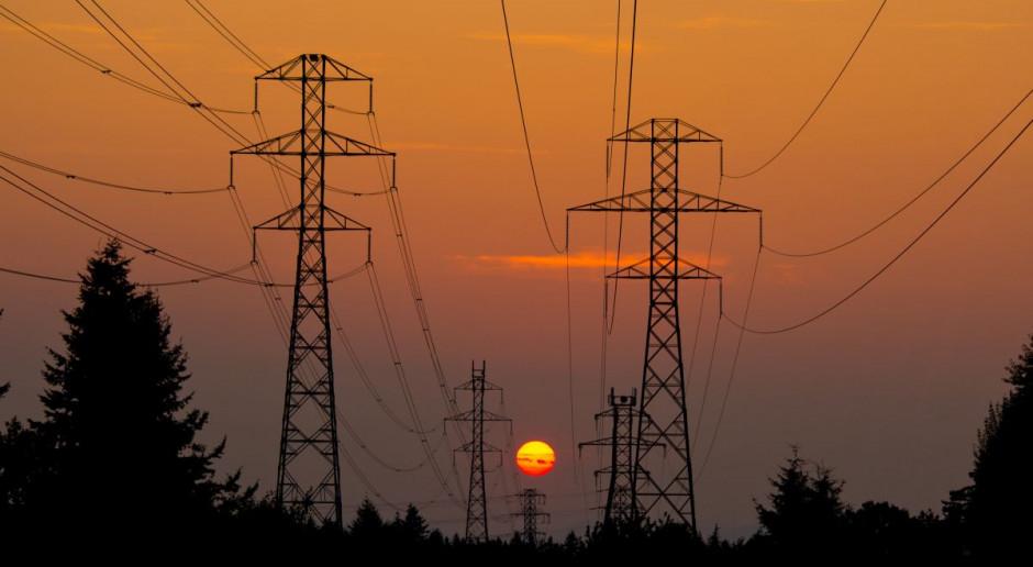 Największa grupa energetyczna podała prognozy na 2020 rok. Oto, co sądzą o nich analitycy