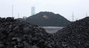 PGG: uchwały antysmogowe eliminują 2,5 mln ton węgla