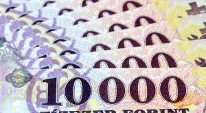 Kurs forinta wyraźnie się umacnia po rekordowych spadkach